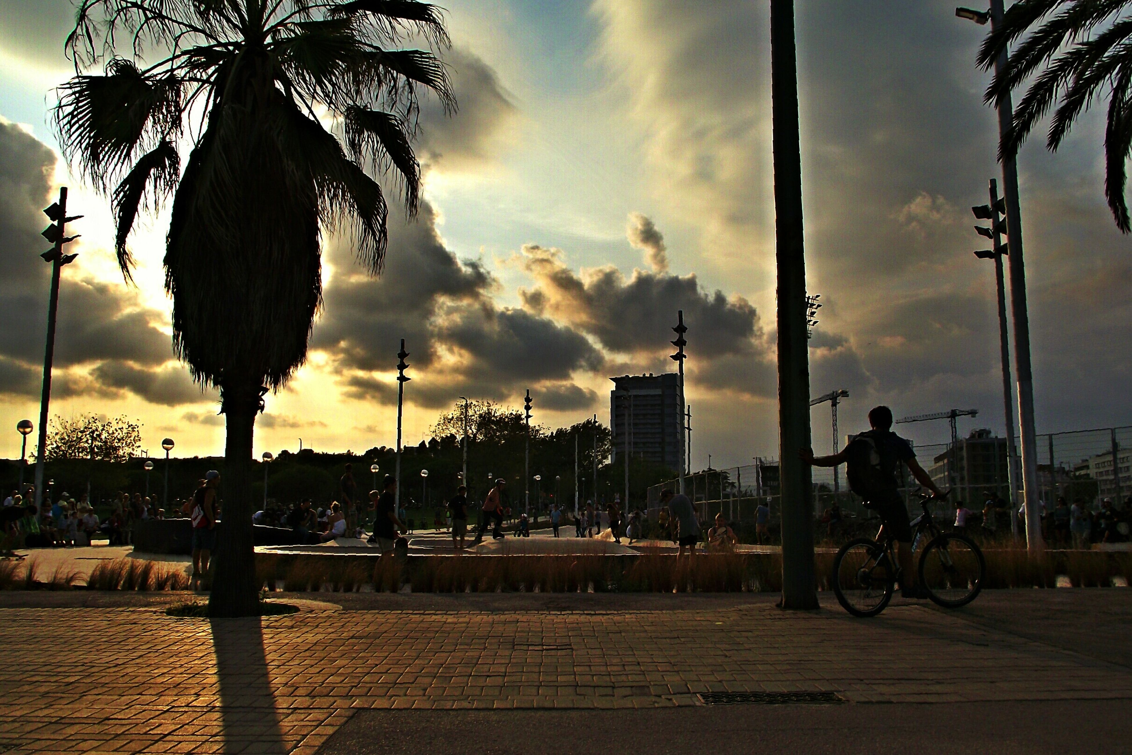 building exterior, city, architecture, sky, built structure, sunset, cloud - sky, street, street light, transportation, car, city life, tree, palm tree, land vehicle, mode of transport, road, cloud, incidental people, cityscape