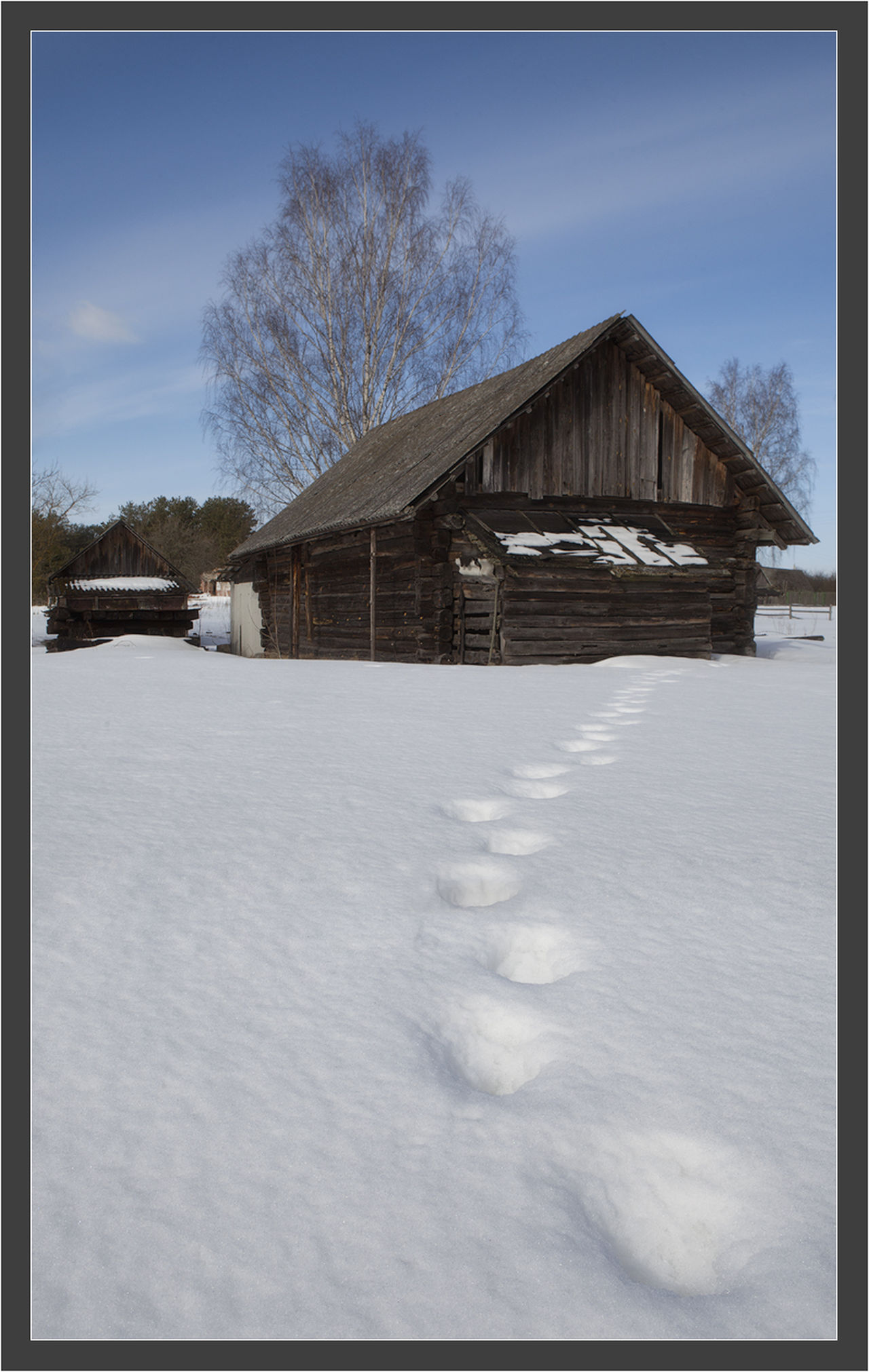 Winter Snow ❄ Snow Belorussia Belorussian Nature Snow❄⛄ House Tree Sky Day Nature Tranquil Scene Outdoors No People Season  Cold Temperature Canon 5D Mk II Canon 5D Mark II Canon EF 100-400 L IS USM