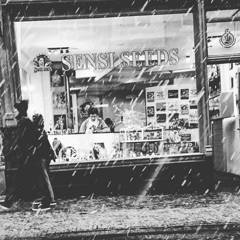 Snow ❄ Snowing In Amsterdam Blackandwhite Cold White Winter Ice Perspective People Beautiful Day Memories Click's_Memorie's&Moment's