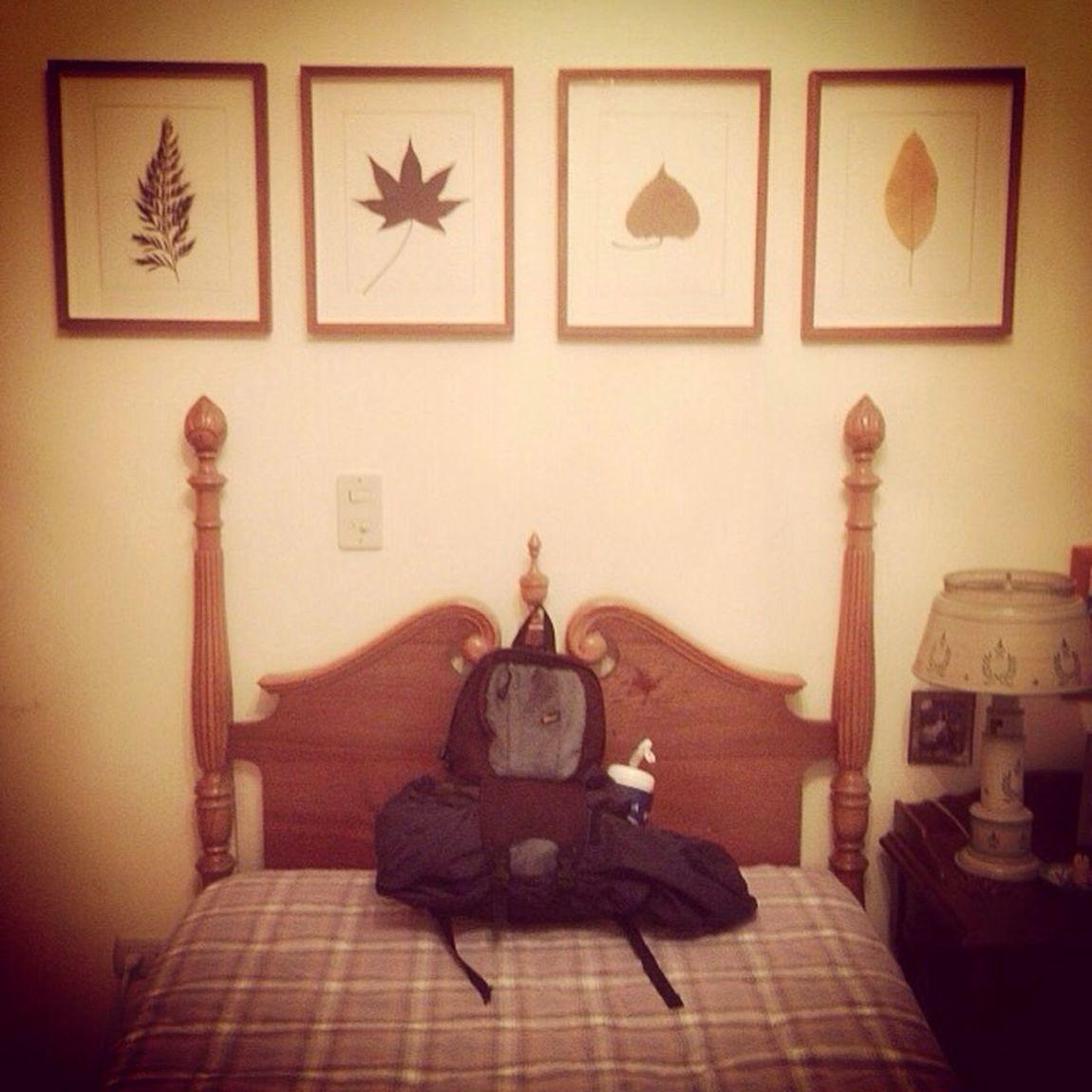 Bed Cama Backpack Morral CaminodeSantiago El Hatillo