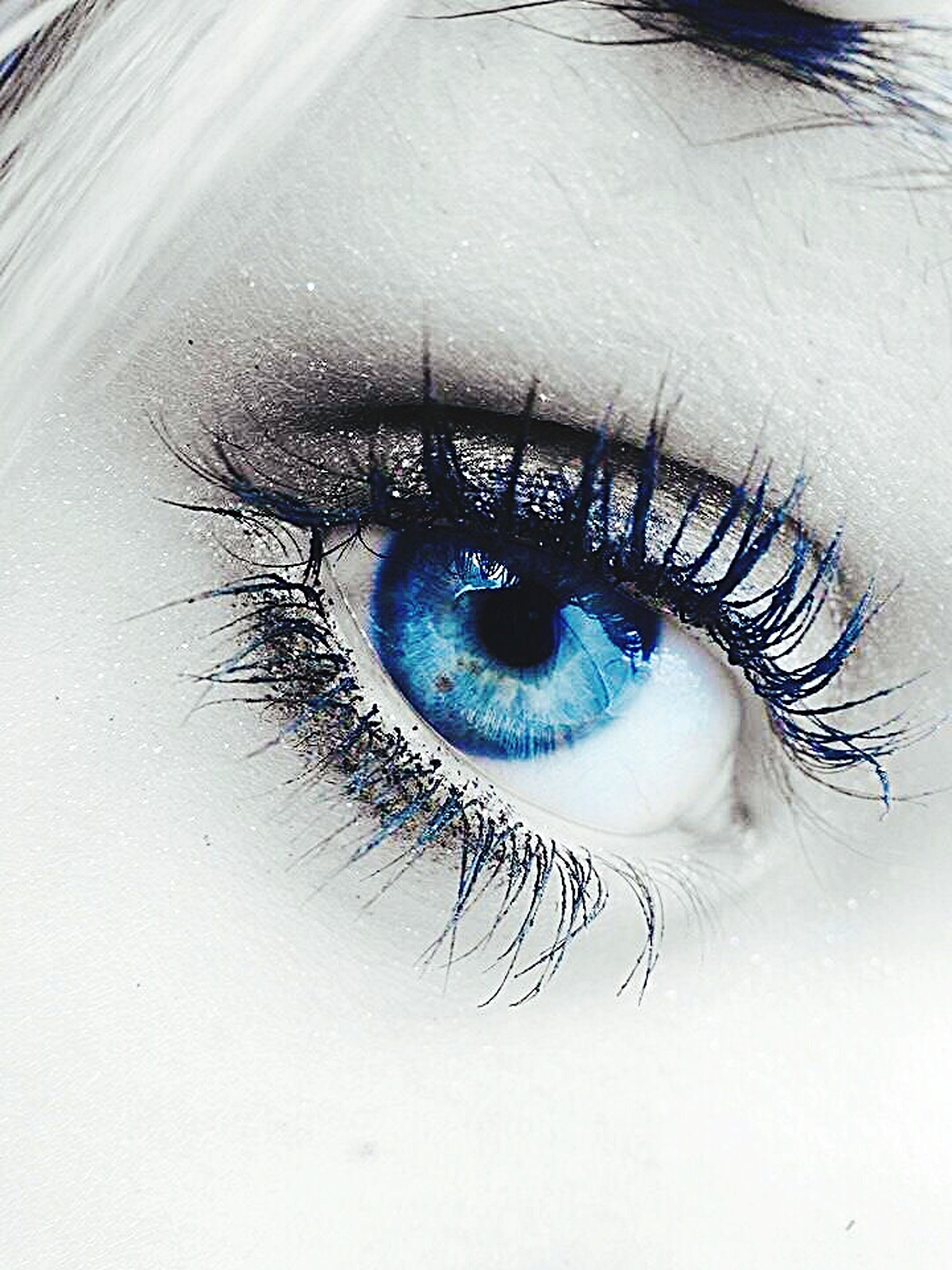 human eye, eyesight, eyelash, sensory perception, close-up, eyeball, part of, iris - eye, looking at camera, portrait, extreme close-up, unrecognizable person, human skin, extreme close up, vision, person, detail