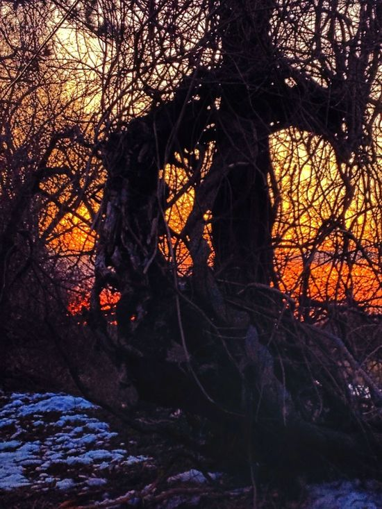 Just an experiment. Fire In The Sky The Dark Landscape Horror Photography Nature's Tango