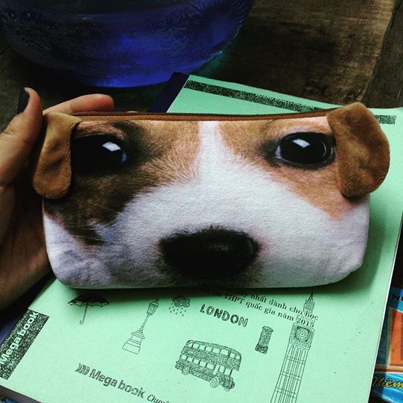 Pen case or real pet :))Pencase Pet Doggies Littepuppy Pretty Styles