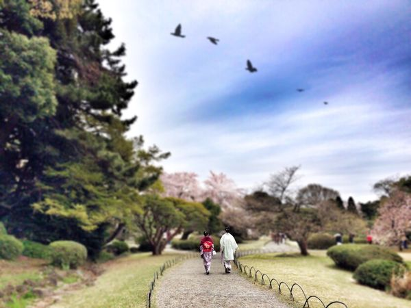 EyeEm Tokyo Meetup 8 Spring Into Spring Silhouette Clouds And Sky The EyeEm Facebook Cover Challenge Street Photography Streetphotography Spring Report Landscape_Collection Landscape_photography