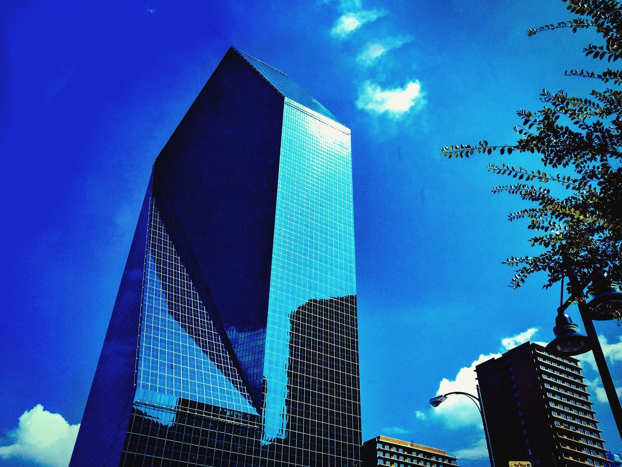 Downtown Dallas Building Downtown Dallas Building Architecture City City Life Cityscapes Hanging Out Beautiful Scenics Fun Summer Skyscraper Texas Relaxing Blue Sky Outdoors Check This Out Hello World Taking Photos Enjoying Life Showcase July Hidden Gems