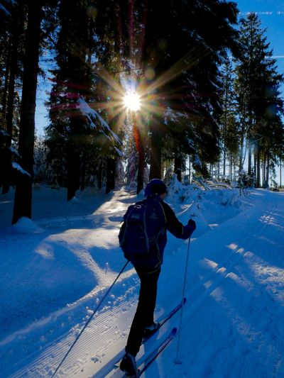 Beauty In Nature Cold Temperature Day Nature One Person Outdoors Rear View Scenics Ski Holiday Skiing Snow Tree Winter