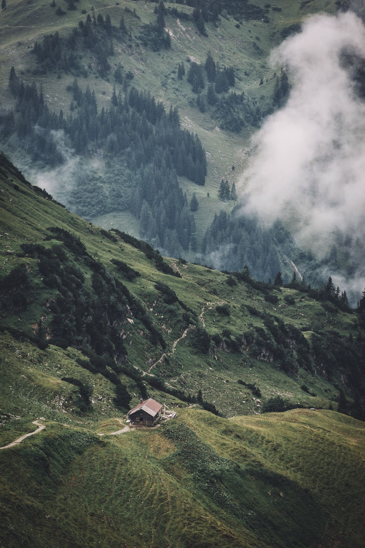 Liking in the mountains Bavaria Germany Travel Vscofilm Mountain Nature Tranquility Landscape Tranquil Scene Beauty In Nature Green Color Scenics Grass No People Outdoors Day Slope