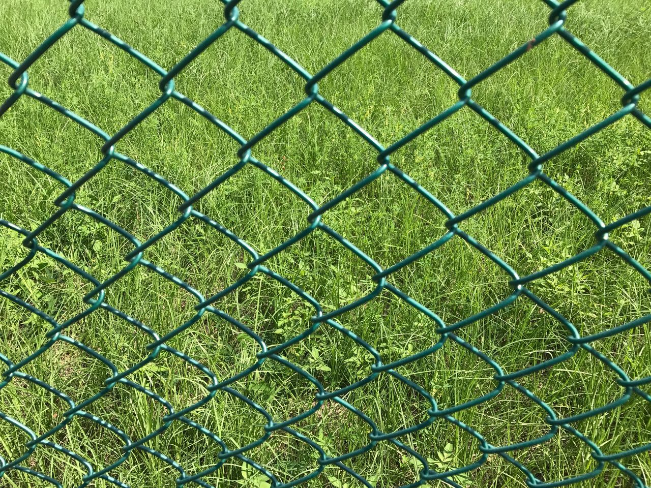 green color, backgrounds, full frame, grass, no people, day, outdoors, sport, nature, playing field, close-up, beauty in nature, soccer field