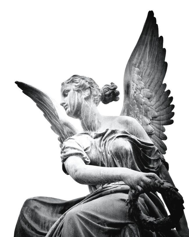 Blackandwhite Angel Sculpture Monochrome