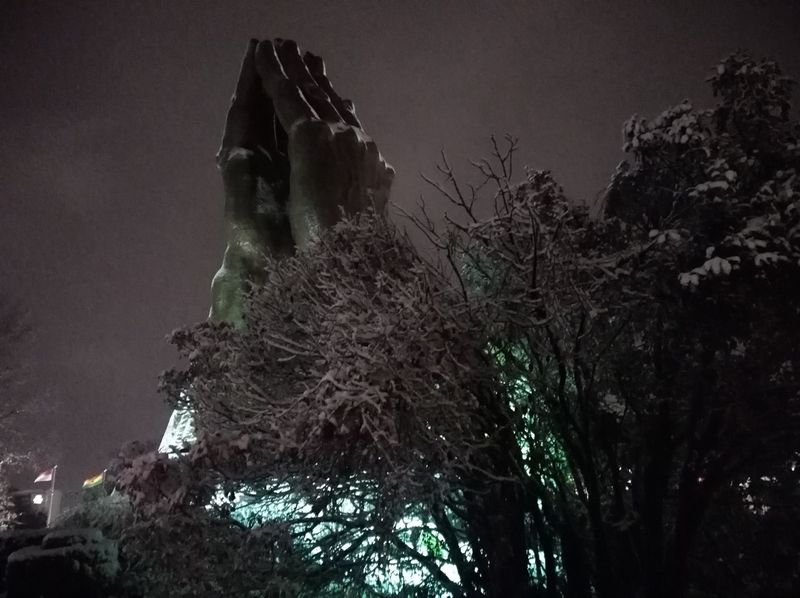 Night Tree No People Low Angle View Outdoors Illuminated Sky City Praying Hands Snow Winter Cold Temperature Statue