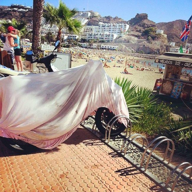 365 días al año de tener posibilidades de conocer tu amor de verano en el sur de Gran Canaria. Love Amor Puertorico Mog án GranCanaria Canarias CanariasViva IslasCanarias CanaryIslands Canariasgrafías Playa Beach