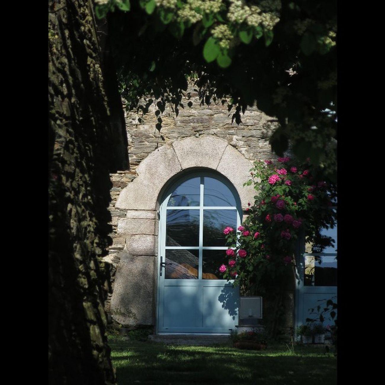 Une Maison du Vieuxbourg de Taupont (Juin 2014 ) A House in the Oldtown of Taupont (June 2014) Morbihan Miamorbihan Bretagne Breizh Fansdebretagne Jaimelabretagne Bretagnetourisme Latergram Architecture Plants Plantes Flowers Fleurs