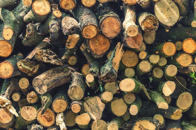 Timber Stack Log Full Frame Backgrounds Woodpile Day Forestry Industry Wood - Material Deforestation No People Outdoors Wood