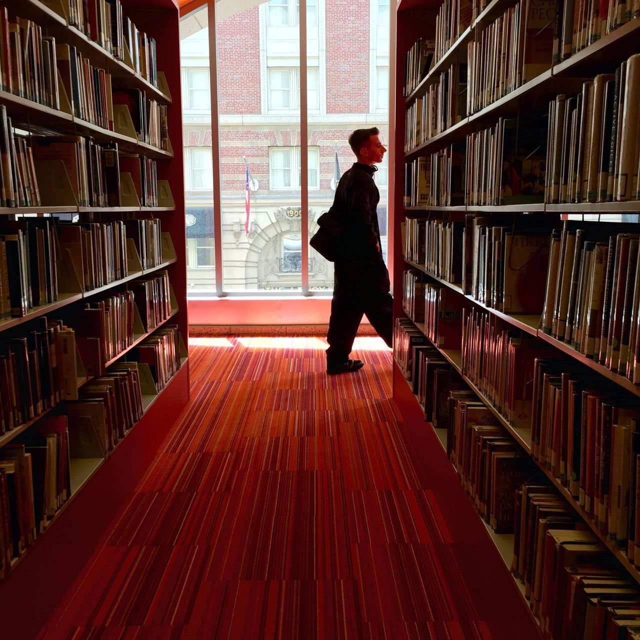 bookshelf, library, book, shelf, indoors, one person, education, rear view, full length, real people, research, lifestyles, men, learning, student, women, adult, day, adults only, young adult, people, only men