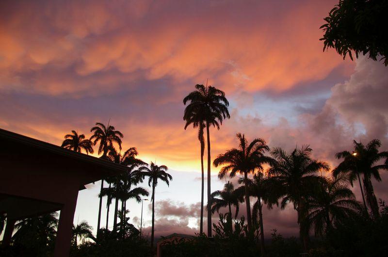 I Love My City Guadeloupe Allédumanoir Holidays Relaxing Nightphotography