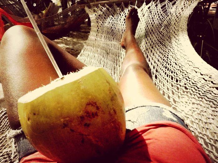 Urban Escape Holiday Escapefromreality Costa Rica