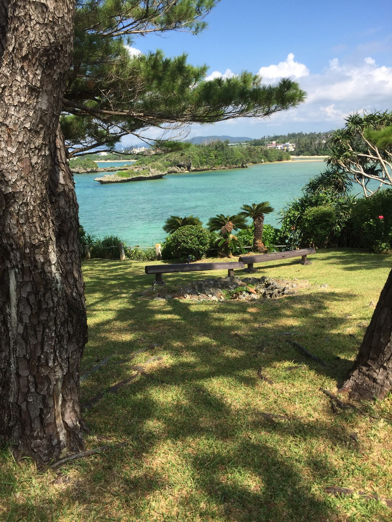 Snap Okinawa 日本 沖縄 Japan スナップ 海 うみ 木陰 木陰のベンチ Shade Of The Bench Shade Bench