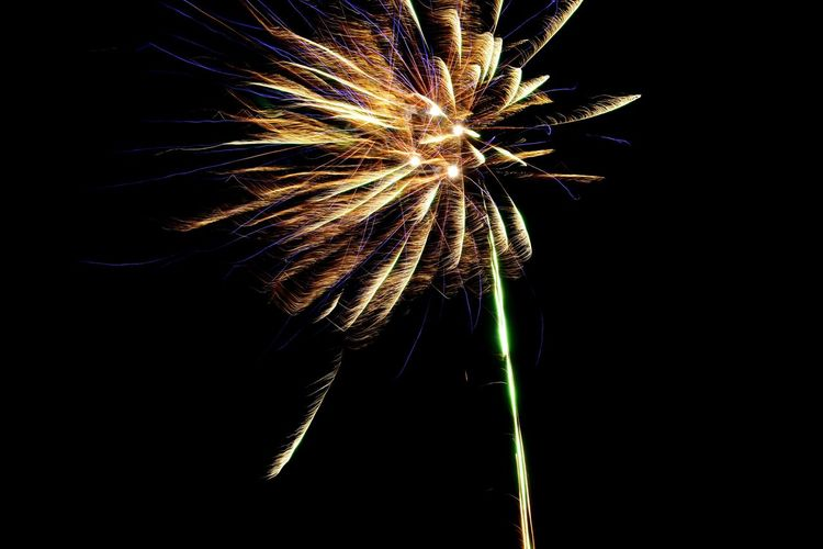 New years eve😍 blue & yellow fireworks😍🤓 New Years Eve Fireworksphotography Fireworks Greenland Innaarsuit Celebration Firework - Man Made Object Firework Display Exploding Arts Culture And Entertainment Night Low Angle View Event Long Exposure Motion No People Illuminated Outdoors Multi Colored Sky Close-up