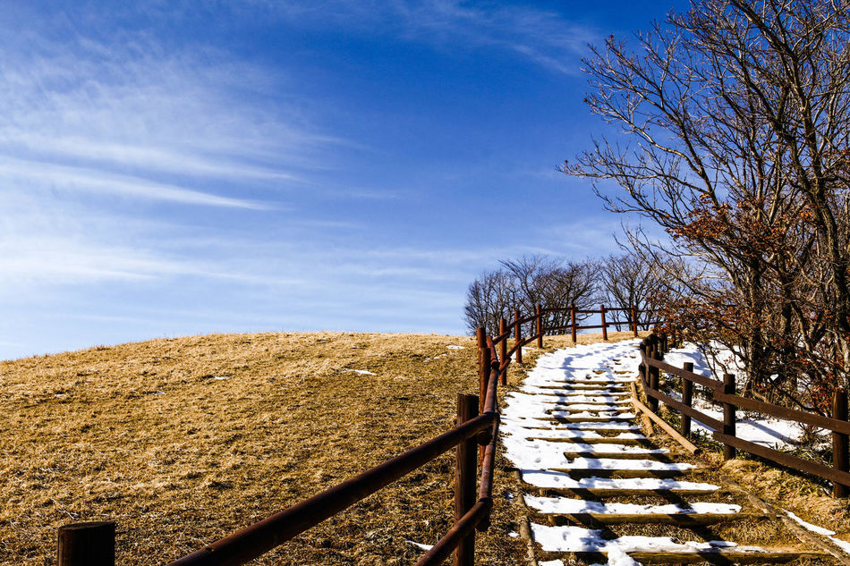 Nature Nature Photography Naturelovers Nature_collection Field Bluesky Peace Peace And Quiet Relaxing Gangreung South Korea