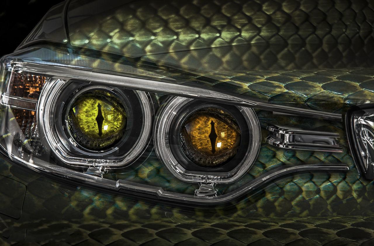 BMW Dragon Bmw BMW Dragon Cars Coches Full Frame Motor No People Xalima Miriel
