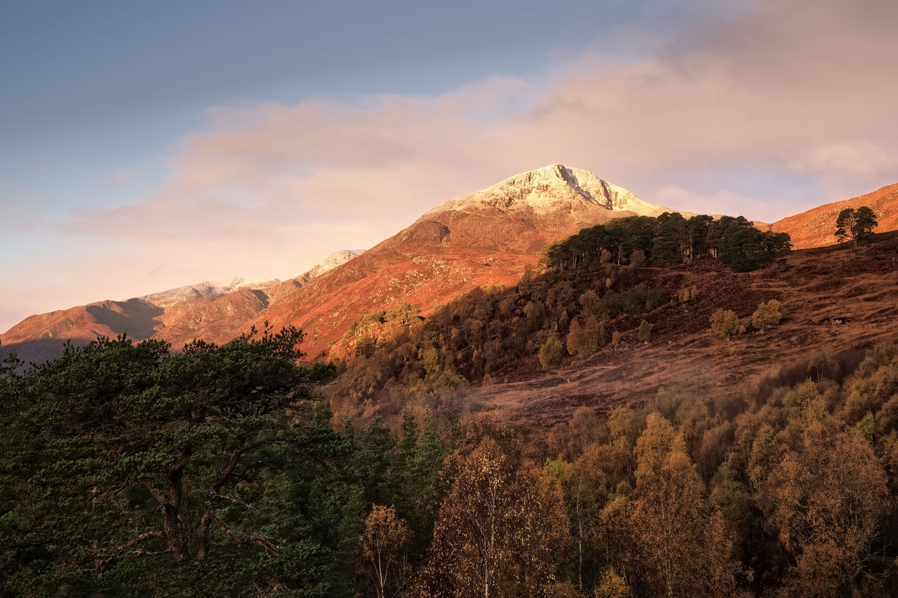 Beautiful autumn morning light on a snow-capped Sgurr na Lapaich, Glen Affric Autumn Autumn Colors Beauty In Nature Highlands Landscape Light Morning Morning Light Mountain Nature Outdoors Pine Woodland Scotland Snowcapped Mountain Tree