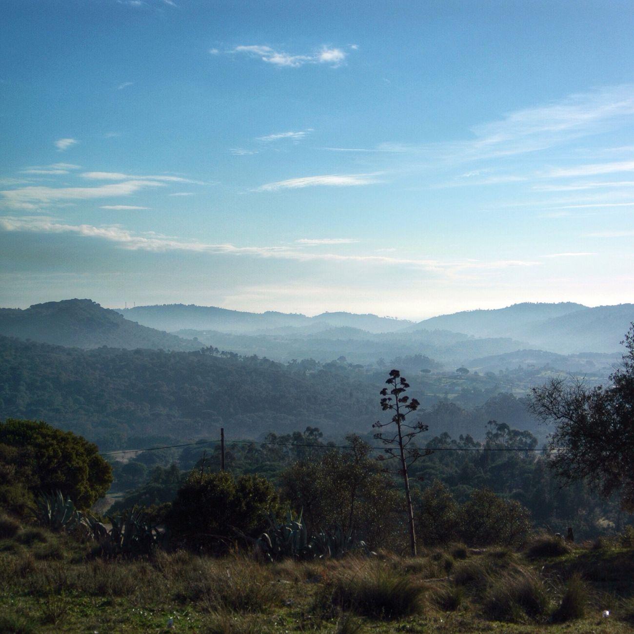 Serra Do Louro