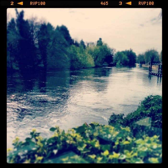 Lunch by the river ...