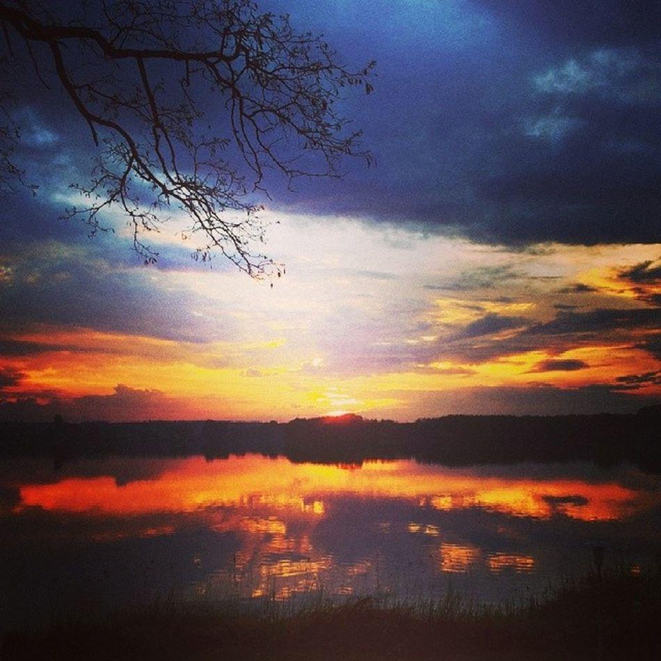 Lake Schwielochsee Sky Sunset Burn Water Red Tree Lightreflex