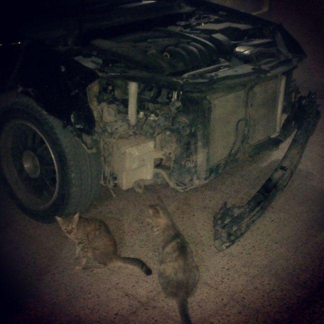 Da car after _Elaccednt