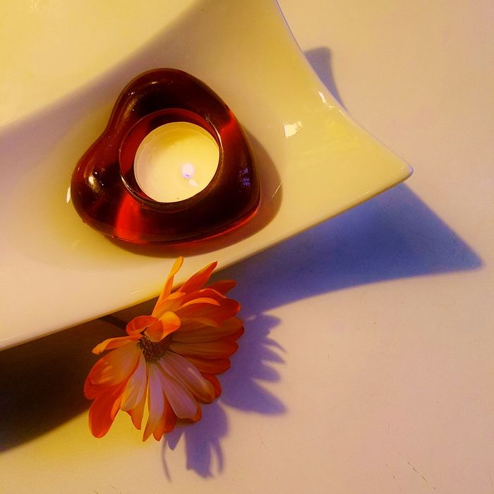 Warm Regards . . . Bright Colors Compliments Contrast Contrasting Colors Daisy Flower Flowers Heart Valentine's Day