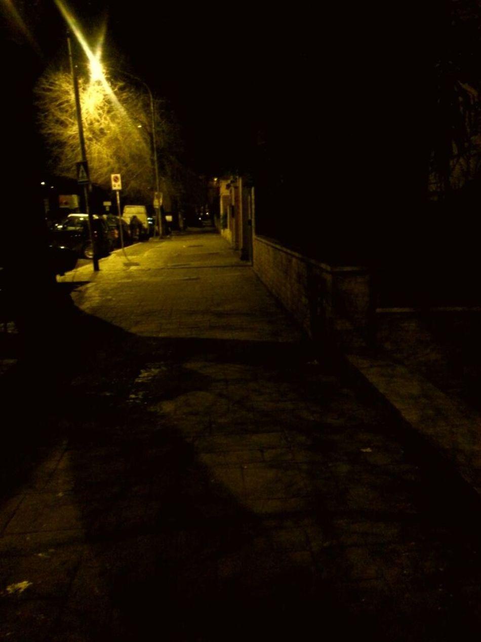 Viale Dei Quattro Venti Monteverde Vecchio Night Streamzoofamily