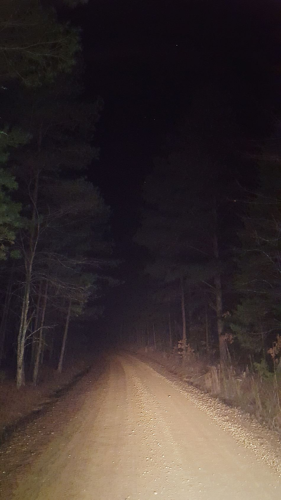 Backgrounds Outdoors Road To Nowhere Dirt Road Dirt Road Photography Backroads Nightshot Trees Nature Forrest Road Stars At Night Starry Night Musical Evening Gravel Road Adventures Southernliving
