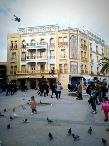 Check This Out Tunis Tunisia Beautiful ♥ Birds Pigeons Tradidional Souks BAB BHAR