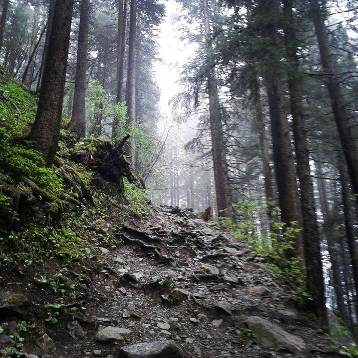 Myview Mt.pilatus Wandern Pilatus EyeEm Nature Lover Svizerra Swiss Mountains Myway 4649 Meter Upintheclouds
