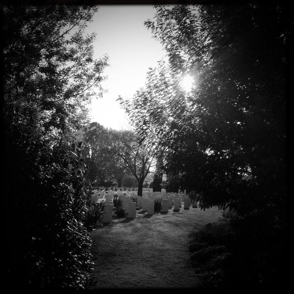 Melancholy Backlight Shadows And Backlighting Bnw_friday_eyeemchallenge NEM Black&white Oggl