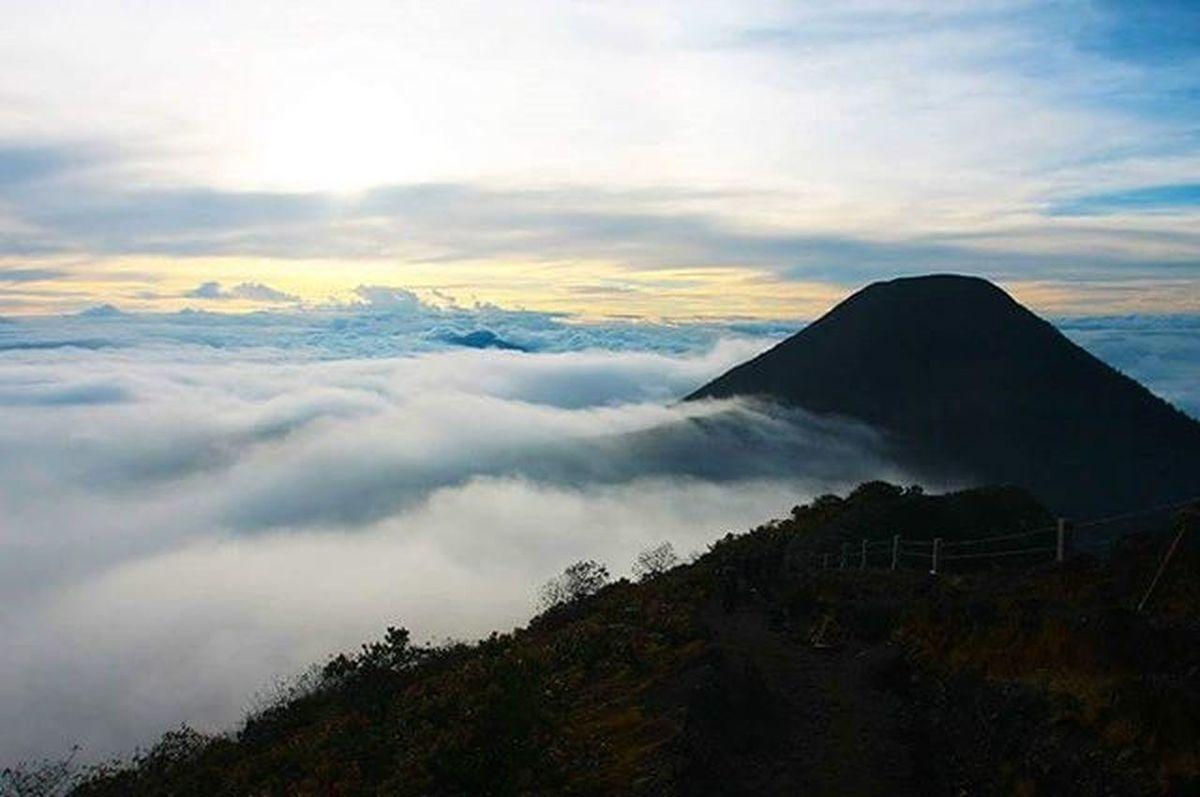 Di atas awan. Lombafototnggp2016 Gunung Gede Pangrango