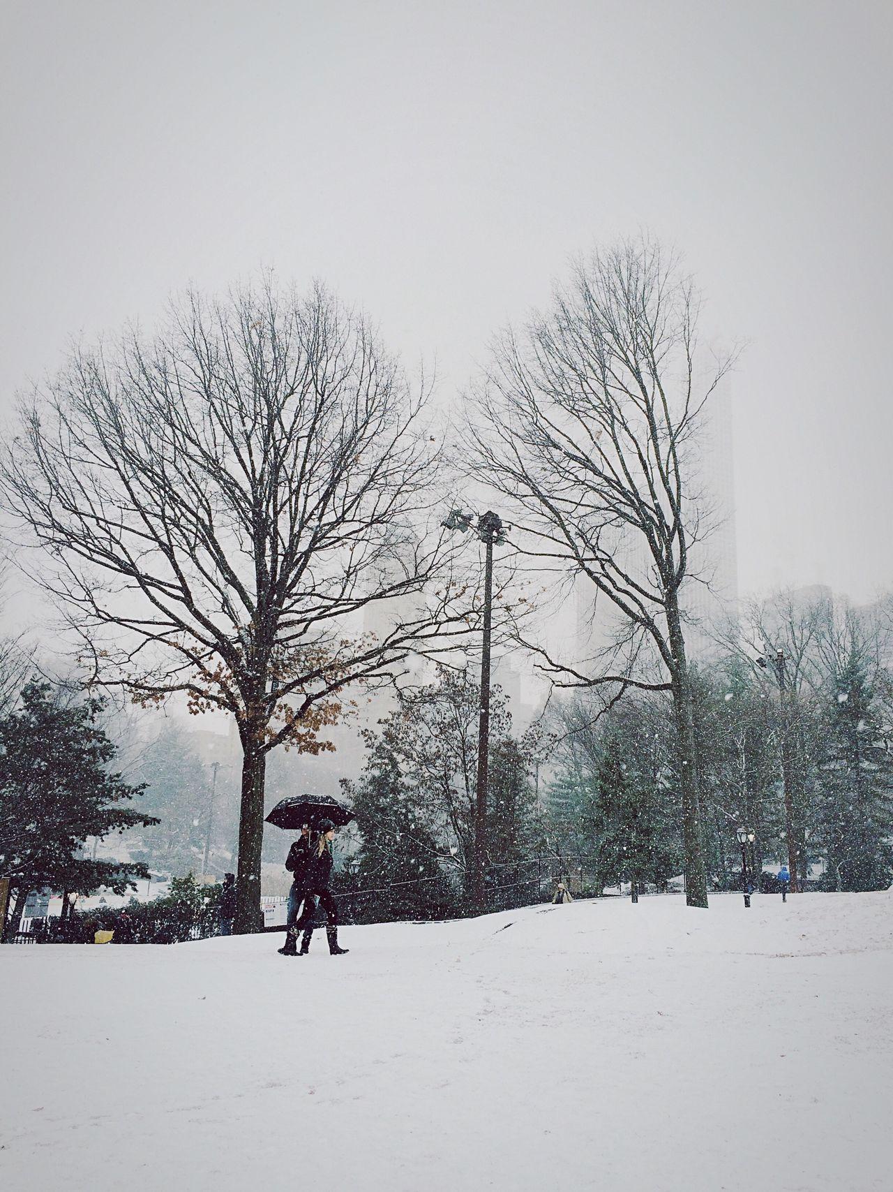 Winter in New York Open Edit Deepfreeze