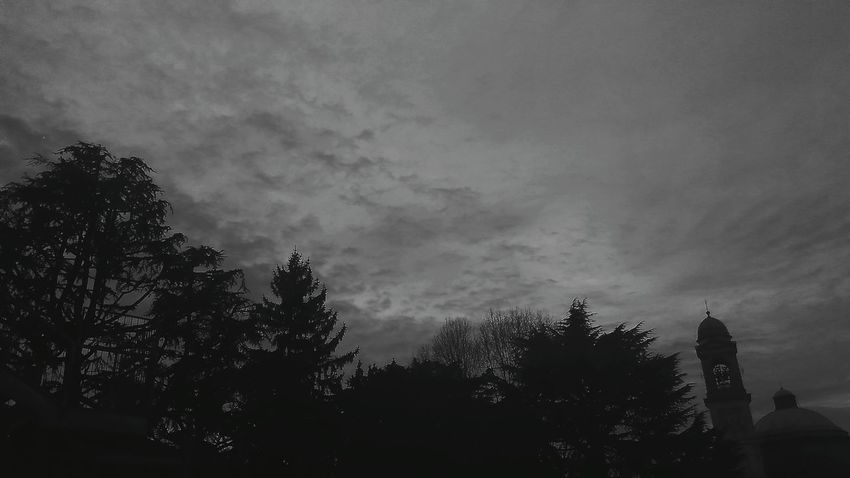 View From My School Monza Black Trees Black And White Bw5filter Edited Cloud_collection  Clouds And Sky Clouds Sky And Clouds Italy Trees And Sky Cloud Formations Cloudy Skies Everyday Life Phone Photography Taking Photos Cloudy Day Cloudy Sky Campanile Church Showcase March
