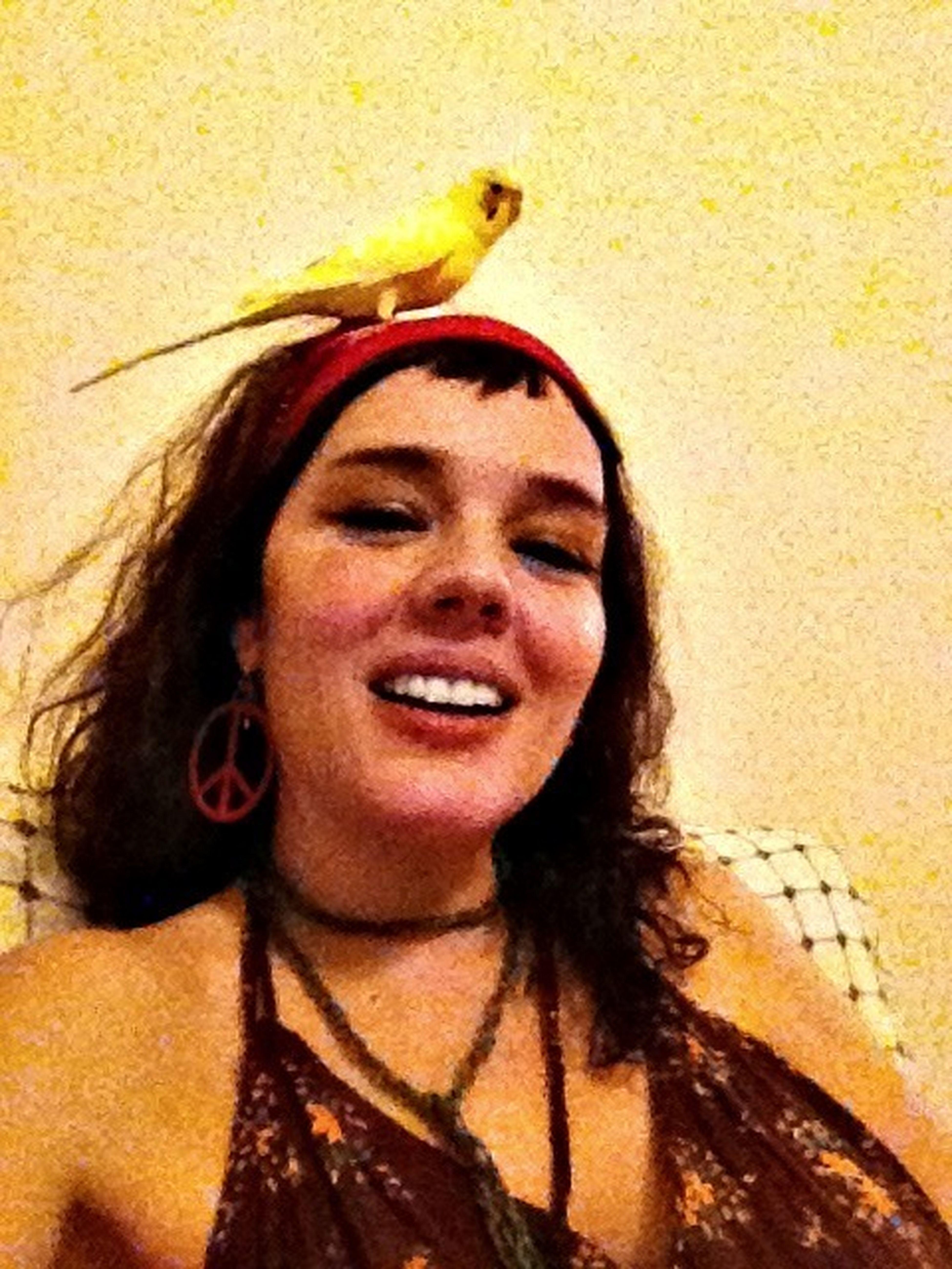 Birdie Birdienumnum  Birdofchance