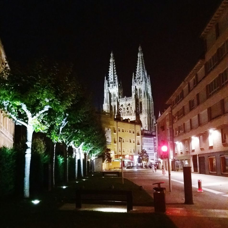 Cathedral Burgos Catedral De Burgos Stone Piedra Gigant
