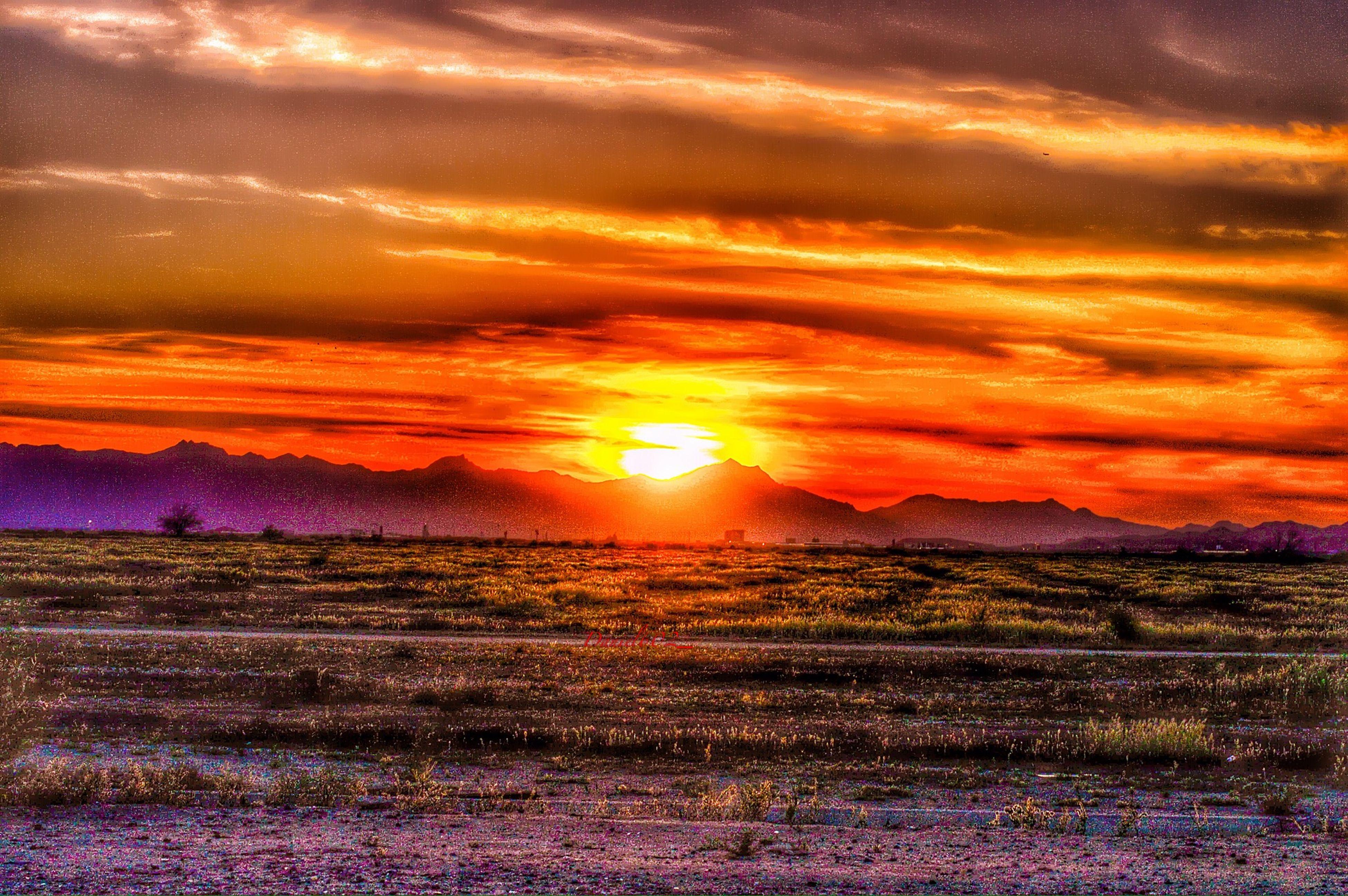 sunset, orange color, scenics, tranquil scene, sun, sky, tranquility, beauty in nature, cloud - sky, landscape, idyllic, nature, dramatic sky, field, cloudy, sunlight, cloud, non-urban scene, remote, sunbeam