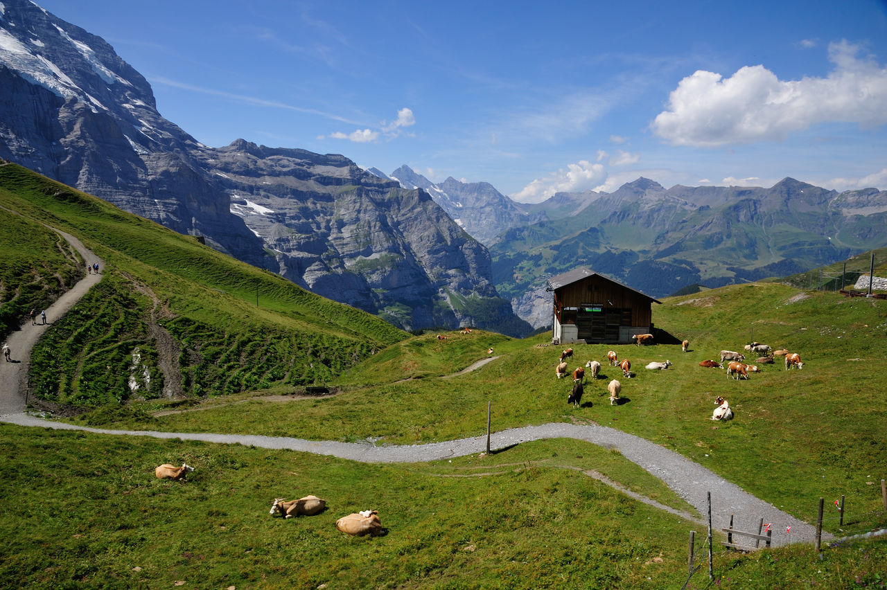 Mountain Mountain Range Panoramic Landscape Tourism Night Mountain Peak Scenics Grass Nature Outdoors No People Beauty In Nature Water Glacier Sky Swiss Travel Swiss Mountains