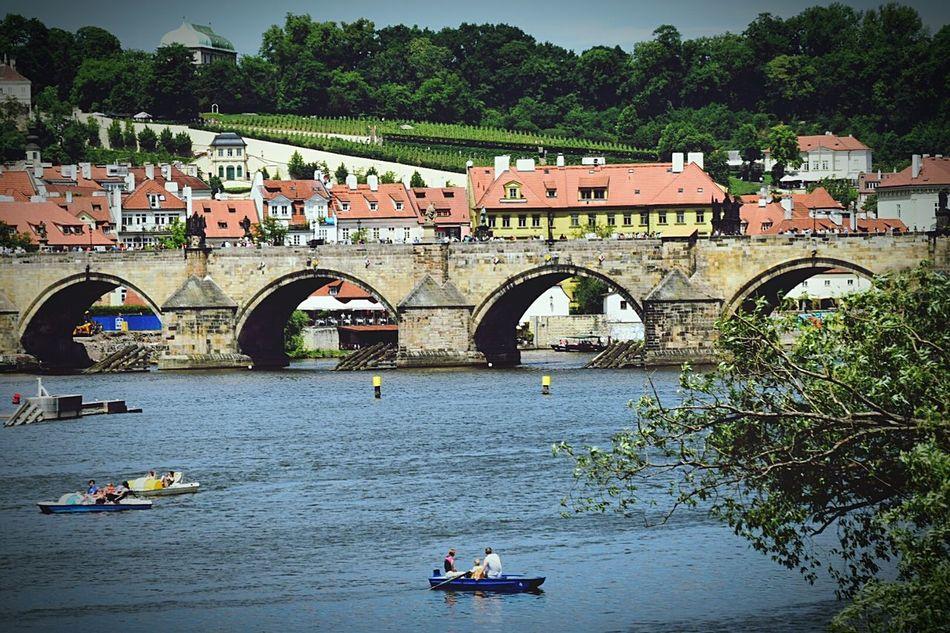 The Architect - 2015 EyeEm Awards EyeEm In Prague I Love Prague Discover Prague Praha Praha2015 The Traveler - 2015 EyeEm Awards Charles Bridge,Praha