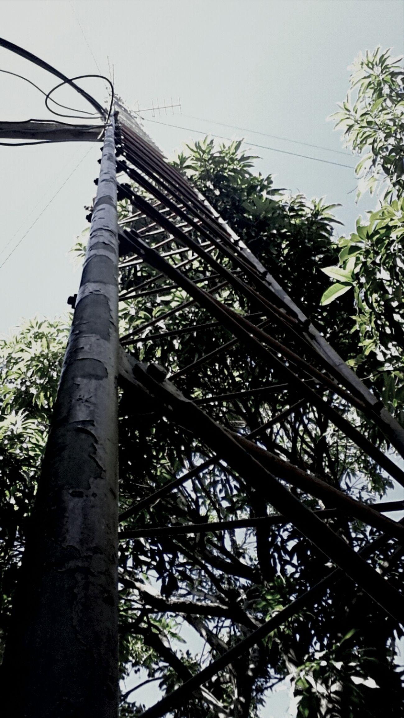 ManaguaSky RadioAntena TheLifeOfAntena