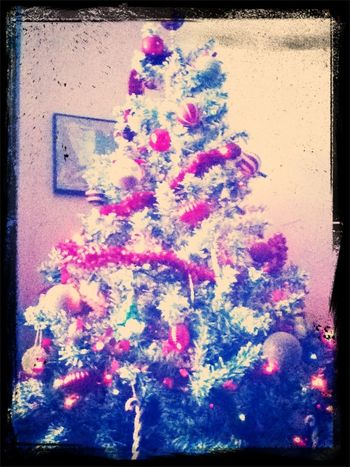 Ever Christmas
