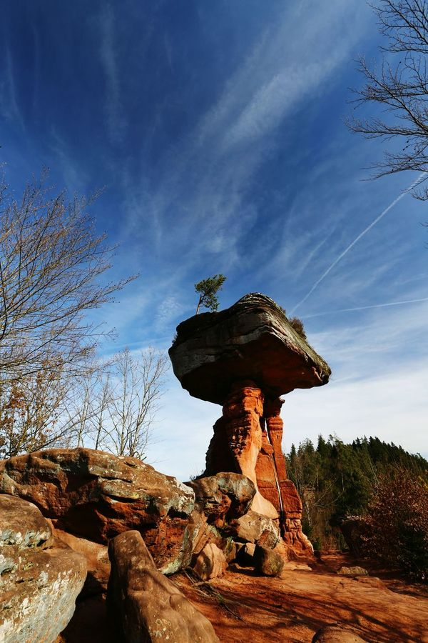 Sky Sunset No People Outdoors Tree Scenics Landscape Close-up Nature Day Nature_collection Germany🇩🇪 Rock Dahner Felsenland Beauty In Nature Nature Clear Sky Teufelstisch Landscape_Collection Landscapes