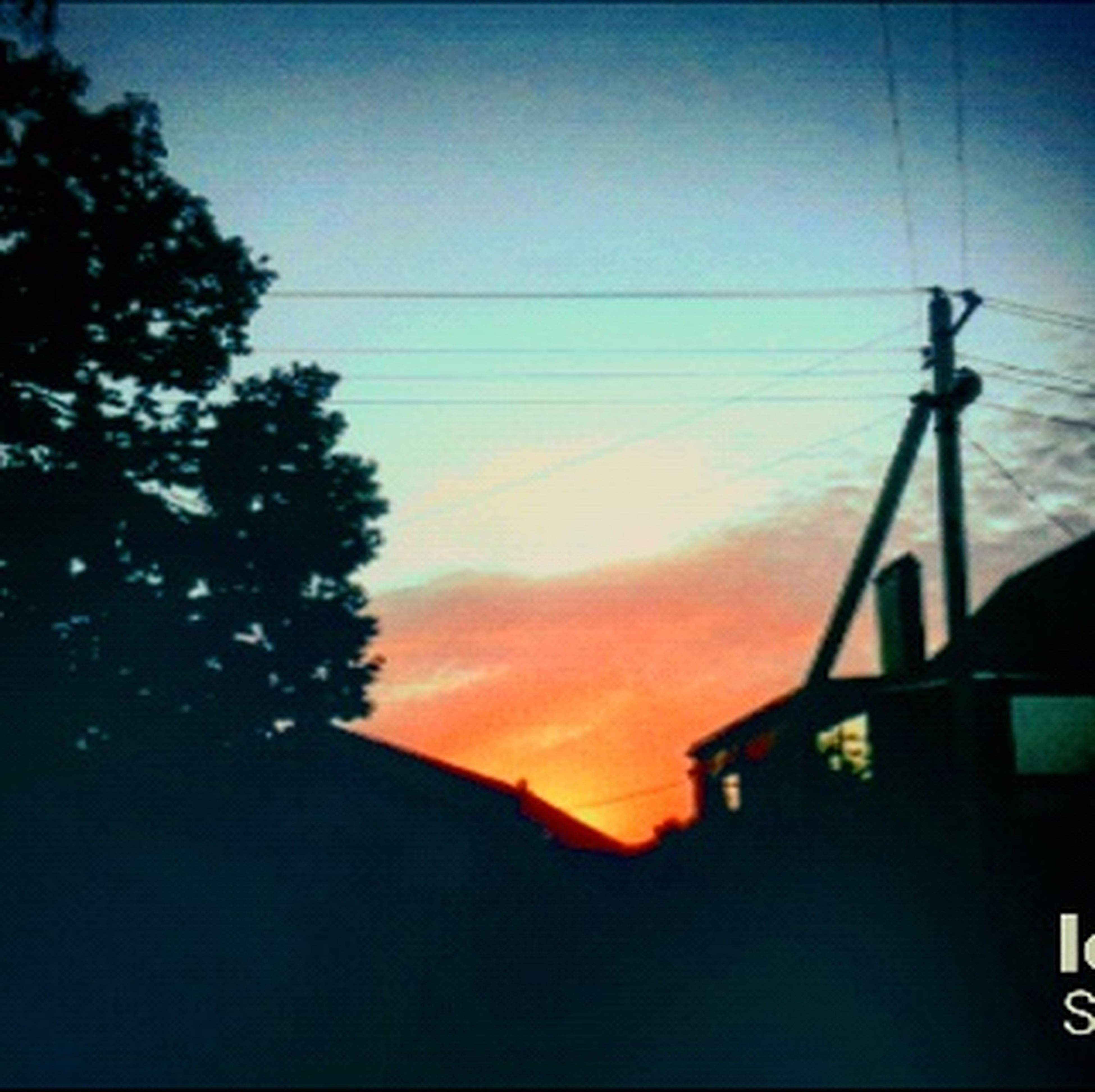 silhouette, tree, sunset, tranquil scene, outline, tranquility, low angle view, dusk, sky, scenics, power line, beauty in nature, blue, nature, cable, dark, cloud, outdoors, high section, calm, no people, solitude, moody sky, remote, telephone line, rooftop