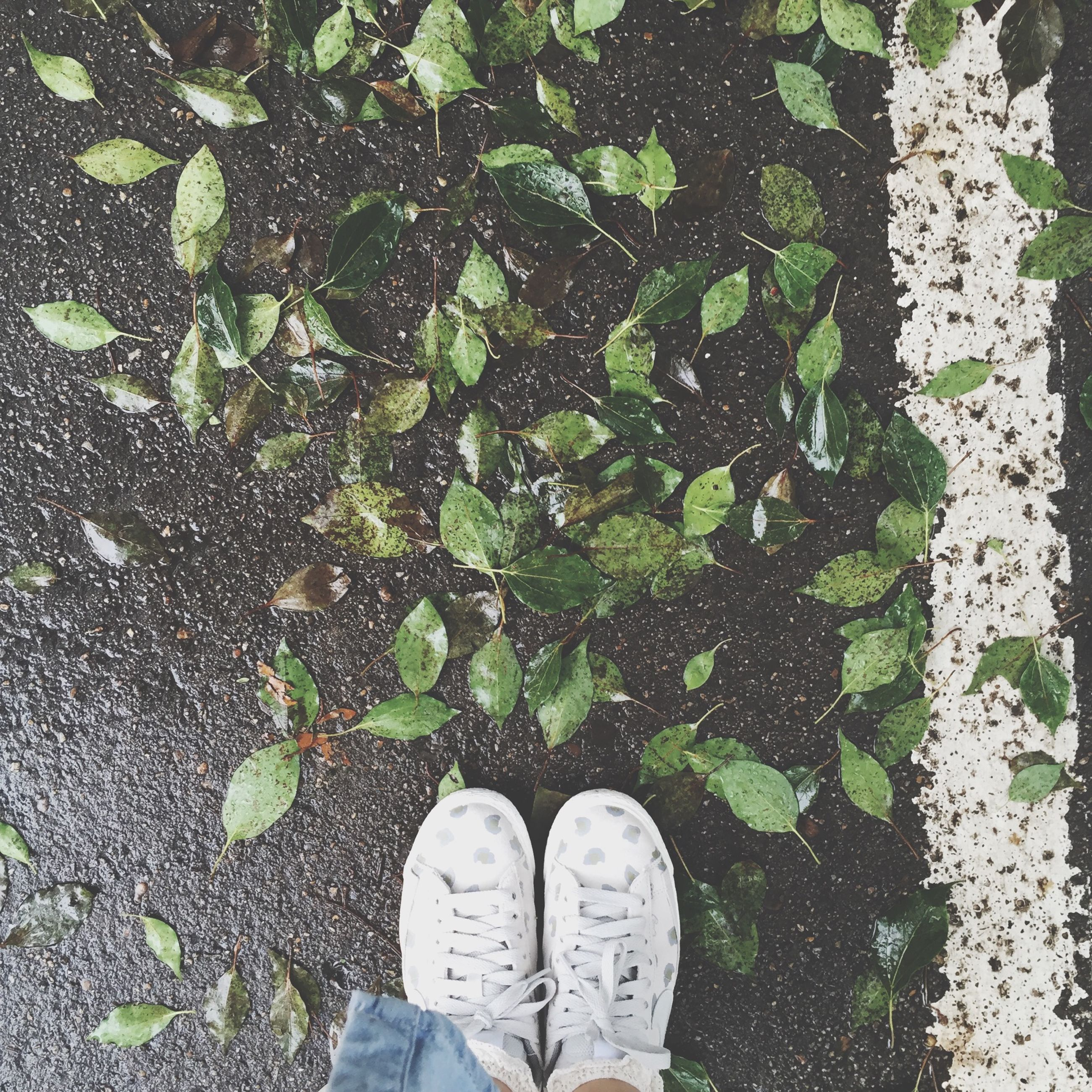 low section, person, shoe, personal perspective, human foot, standing, footwear, high angle view, lifestyles, men, unrecognizable person, leisure activity, leaf, jeans, directly above, grass, day