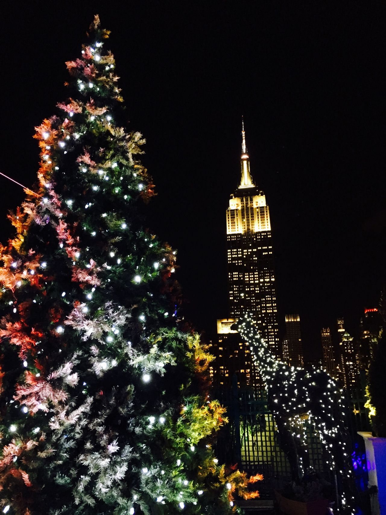 USA NYC Xmas Xmas Tree Illuminated Night Architecture Building Exterior City New York New York City Empire State Building Manhattan Christmas Christmas Tree Christmas Decoration Christmas Lights
