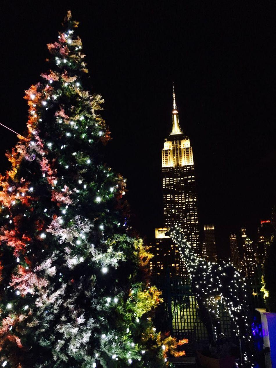 USA NYC Xmas Xmas Tree Illuminated Night Architecture Building Exterior City New York New York City Empire State Building Manhattan Christmas Christmas Tree Christmas Decoration Christmas Lights